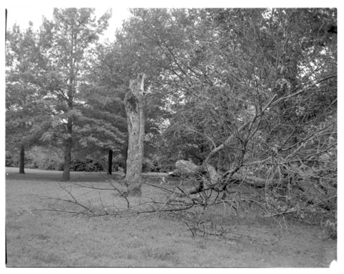 Storm damage on Menninger Clinic East Campus, Topeka - Page