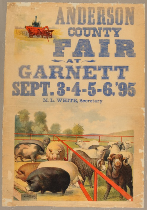 Anderson County fair at Garnett, Kansas - Page