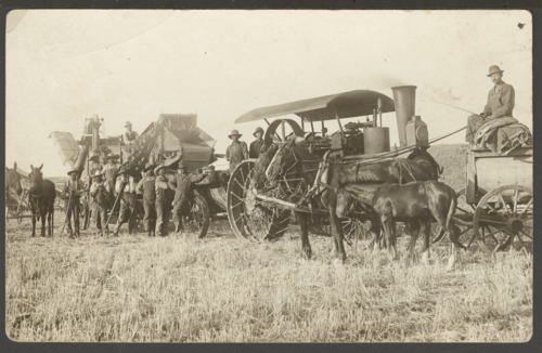 Harvest equipment on Elmer Nicholson's farm in Decatur County, Kansas - Page