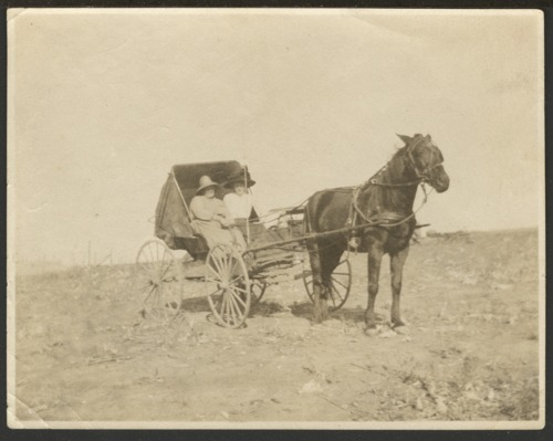 Christena Nicholson and Ellen Nicholson in a horse drawn carriage - Page