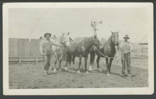 Arthur Alexander Randall and Elmer Nicholson with horses - Page