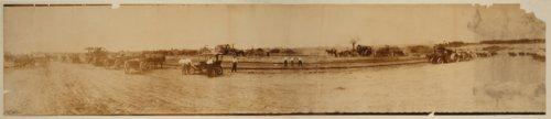 Fairgrounds at St. Louis, Missouri - Page