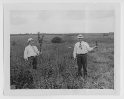Kansas Board of Agriculture officials, Topeka, Kansas, inspecting a field - Page