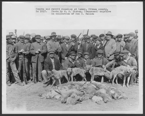 Coyote and Rabbit round-up, Lamar, Kansas - Page