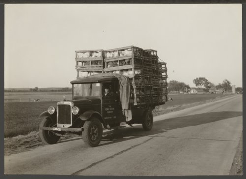 Perry Packing Company Truck, Manhattan, Kansas - Page