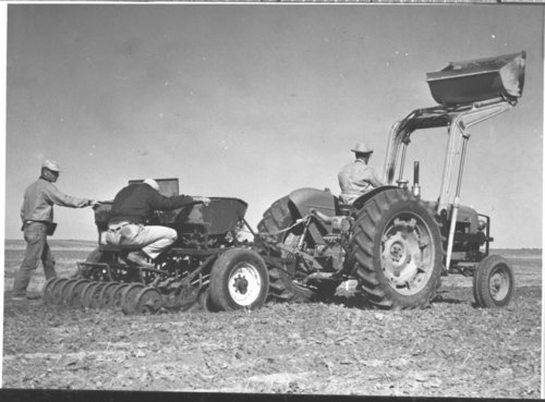 Drilling wheat, Stevens County, Kansas - Page