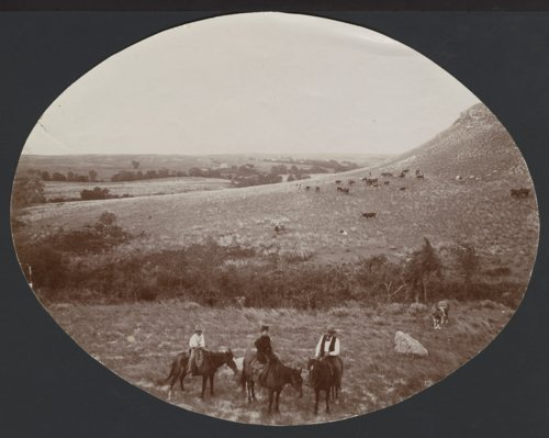 Unidentified people with a herd of cattle possibly in Seward County, Kansas - Page