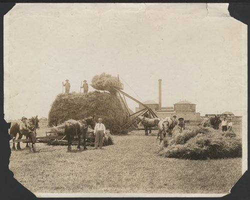 Harvesting wheat in Garden City, Kansas - Page