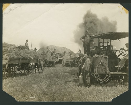 Farmers harvesting wheat possibly in Seward County, Kansas - Page