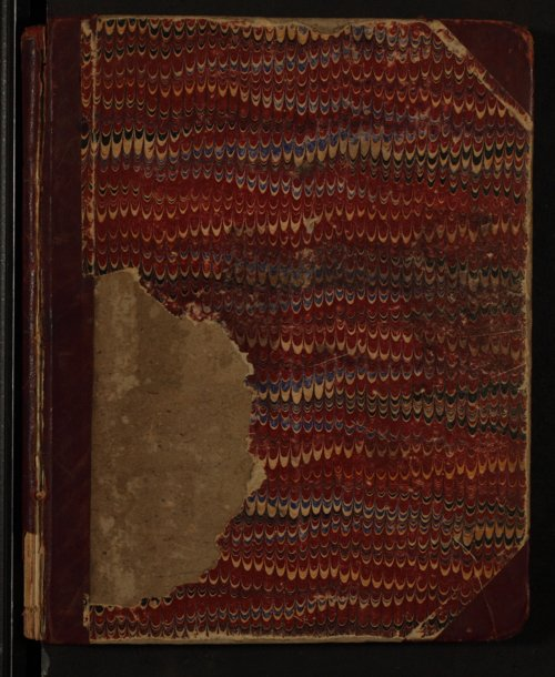 Woman's Christian Temperance Union district books - Page