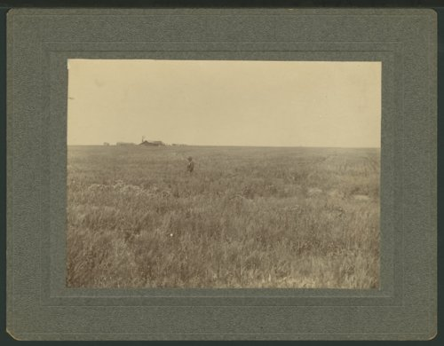 Farmer in his wheat field, Seward County, Kansas - Page