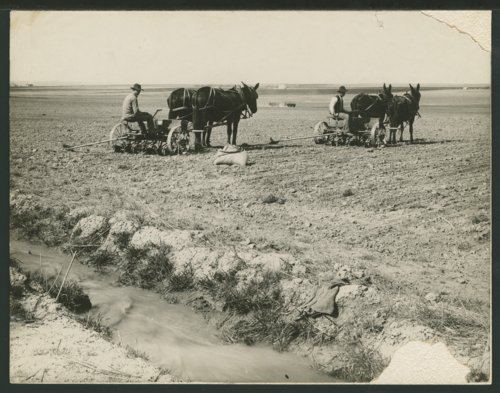 Planting a crop in Seward County, Kansas - Page