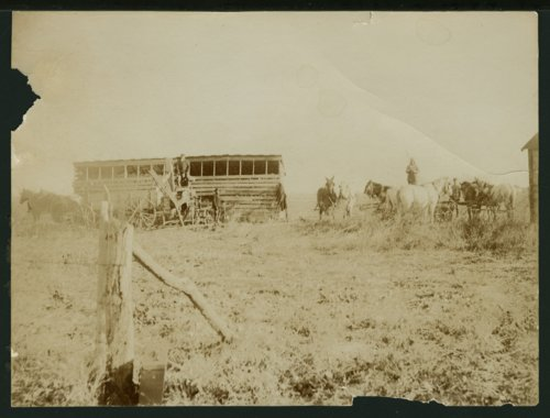 People working on farms in Seward County, Kansas - Page