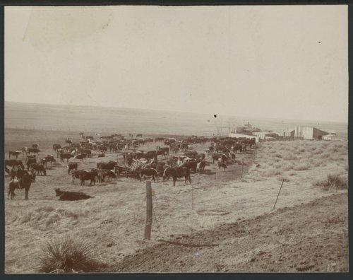 Forbes ranch in Seward County, Kansas - Page