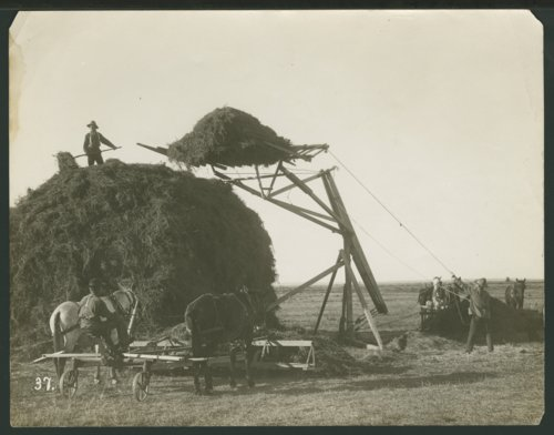 Harvest equipment in Seward County, Kansas - Page