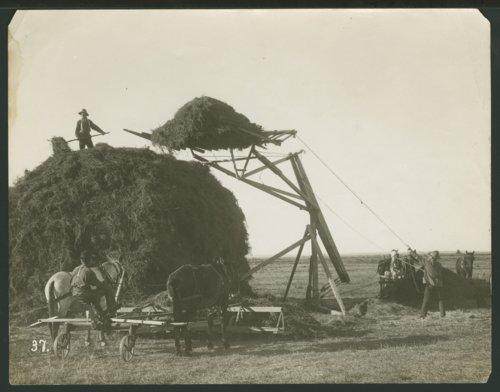 Harvest equipment in Seward County, Kansas - Page