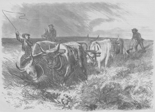 Plowing on the prairies beyond the Mississippi - Page
