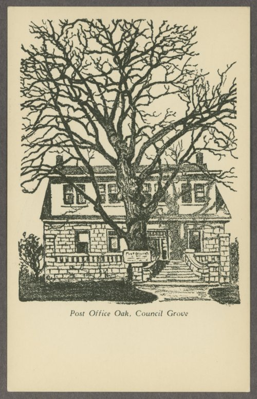 Views of the post office oak tree and post office building, Council Grove, Kansas - Page