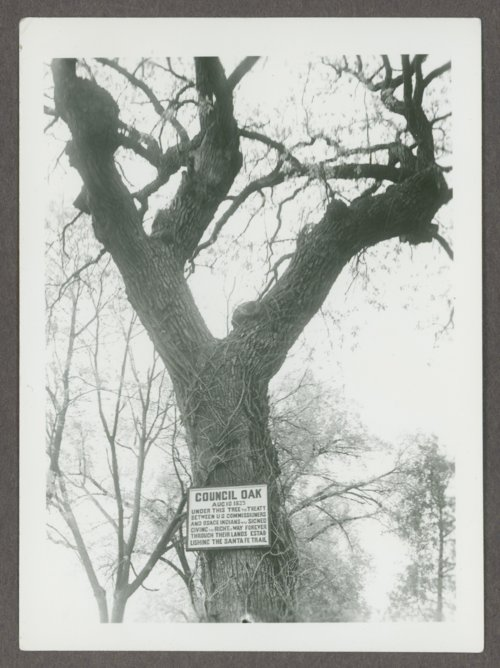 Old council oak tree in Council Grove, Kansas - Page