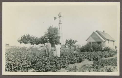Grant N. Dunn's garden in Haskell County, Kansas - Page