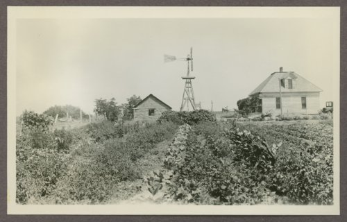 Sear's family garden in Graham County, Kansas - Page