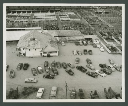 Livestock sale barn, Dodge City, Kansas - Page