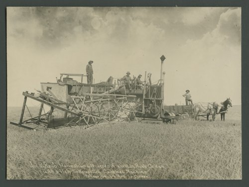 Self-propelled combine, Rush County, Kansas - Page
