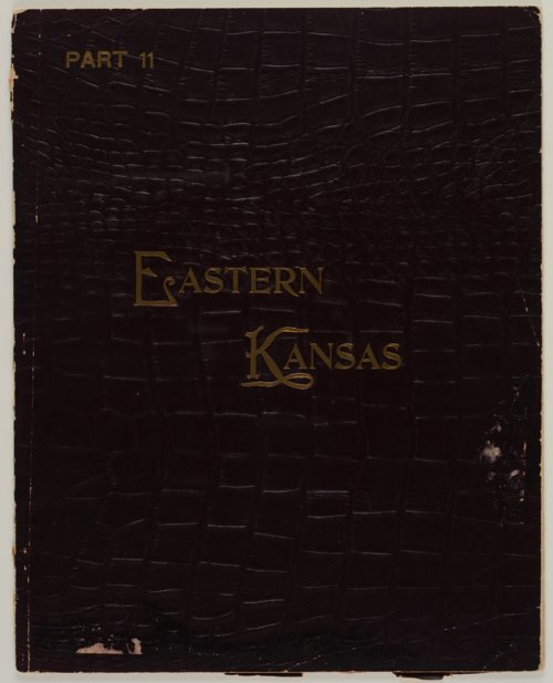 Art Work on Eastern Kansas - Page