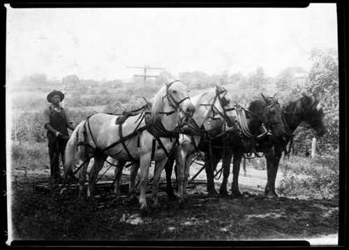 Road drag used in road construction, Lecompton, Kansas - Page