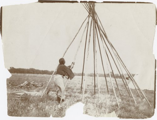 Cheyenne woman erecting a lodge - Page
