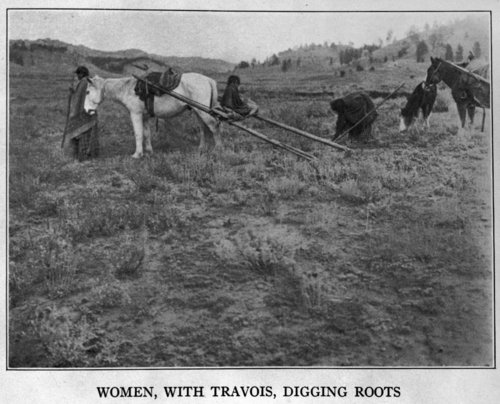 Cheyenne women with travois - Page