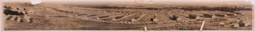 60th Field Artillery Brigade at Camp Whiteside - Page