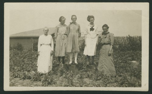 Beck family near Glasco, Kansas - Page