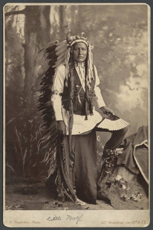Little Wolf, Cheyenne Indian - Page