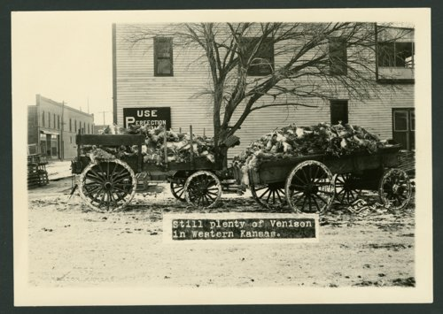 Hunting results, Norton, Kansas - Page
