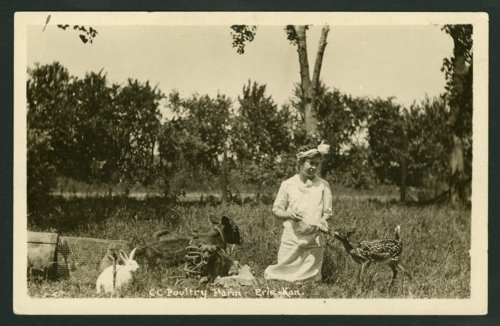 Cozy Corner Poultry Farms, Erie, Kansas - Page