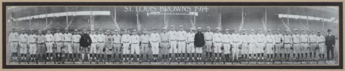 Wiley Taylor and Earl Hamilton with the St. Louis Browns baseball team - Page