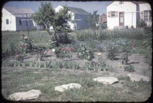 Flower garden and houses in Russell, Kansas - Page