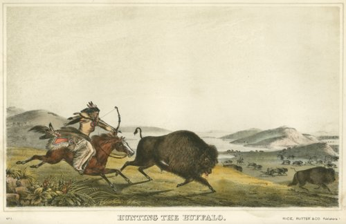 Hunting the buffalo - Page