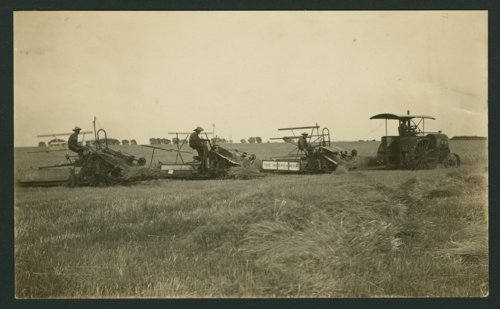 George and Edmond Whiting binding wheat near Mount Hope, Kansas - Page
