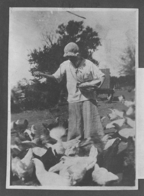 Possibly Josephine Mead, feeding chickens - Page