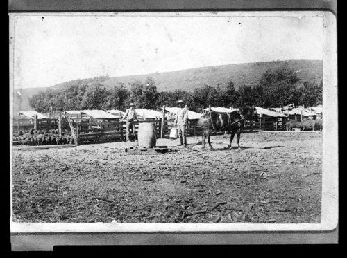Albert Rogler & William Crouch at Rogler Ranch - Page