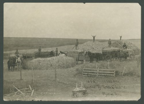Corn cribs, Norton County, Kansas - Page