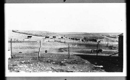 Davenport Ranch in Wabaunsee County, Kansas - Page