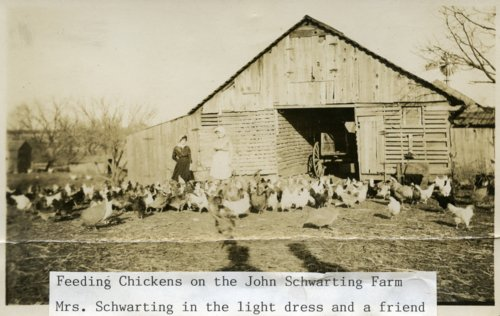 John Schwarting farm, Eskridge, Kansas - Page