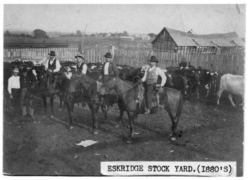 Stockyards in Eskridge, Kansas - Page