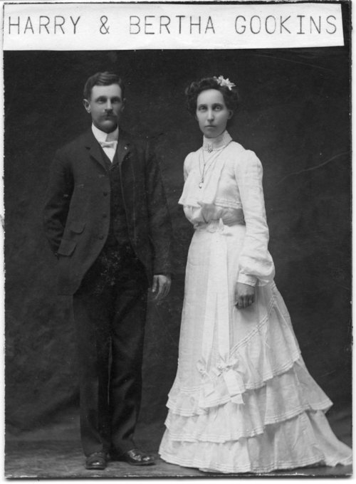Harry and Bertha Gookins - Page