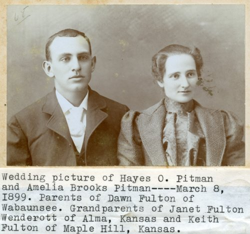 Hayes and Amelia Pitman - Page