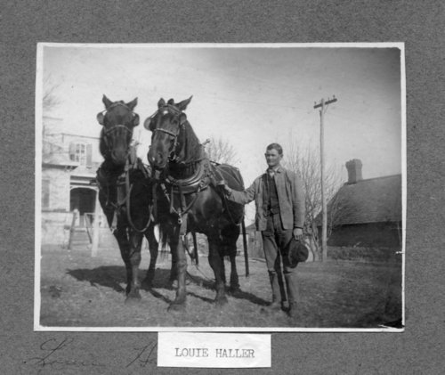 Louie Haller with mules in Alma, Kansas - Page
