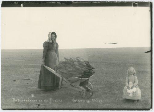 Ada and Burt McColl gathering buffalo chips - Page